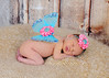 Baby Lila's newborn session :