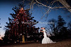 2014 Weddings : 118 galleries with 139128 photos
