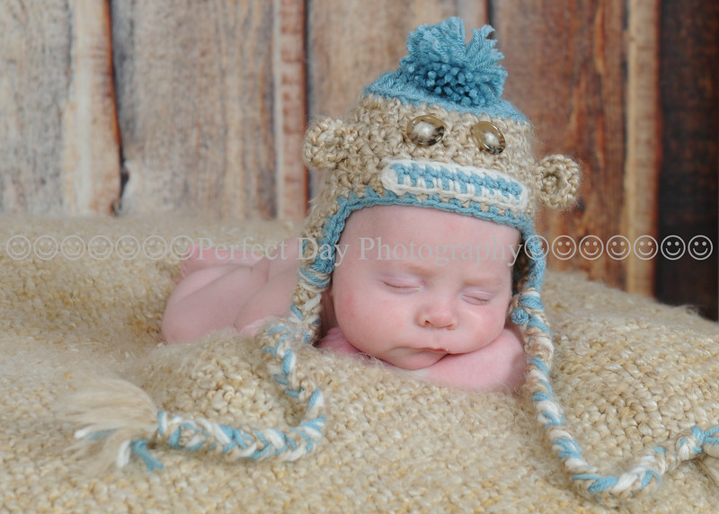 Baby Carter - Newborn Session