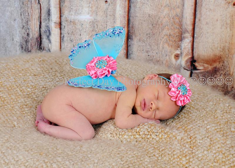 Baby Lila's newborn session