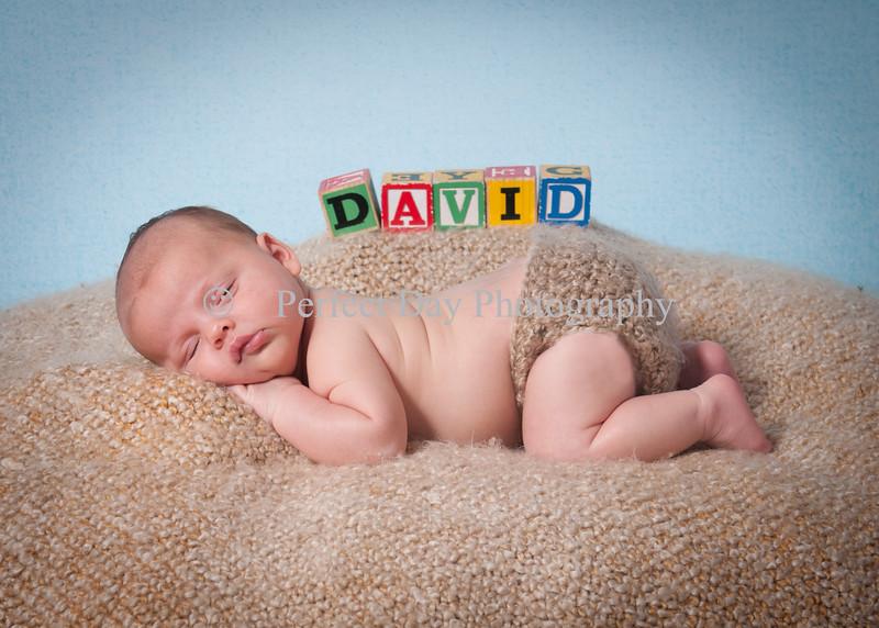 David's Newborn Session